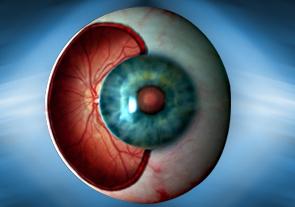 Retinal Diseases